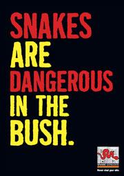 Slogan of Snake condoms: Snakes are dangerous in the bush.