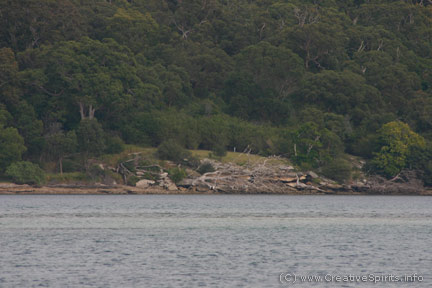 Aboriginal camp site near Port Hacking, NSW.