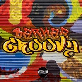 Barkaa groovy