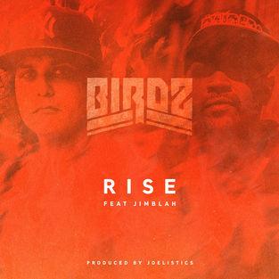 Birdz - Rise (feat. Jimblah) - Single