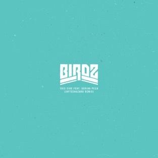 Birdz - This Side (feat. Serina Perch) (Jayteehazard Remix, Single)