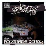 Briggs - Homemade Bombs